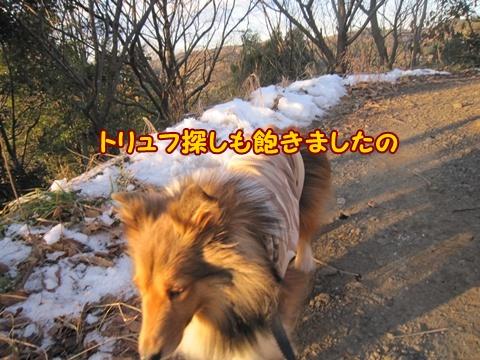 20130119_4.jpg