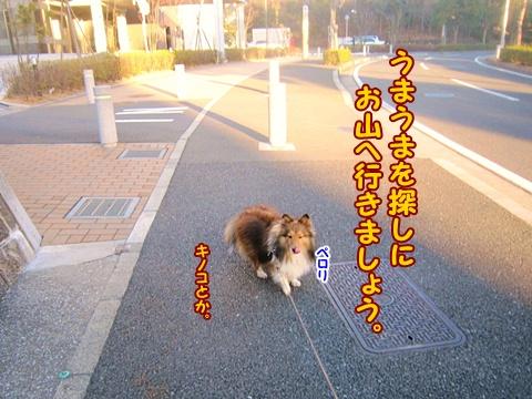 20130221_3.jpg