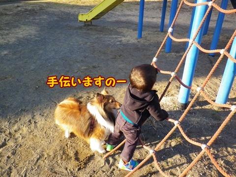 20130306_10.jpg