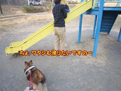 20130308_0_10.jpg