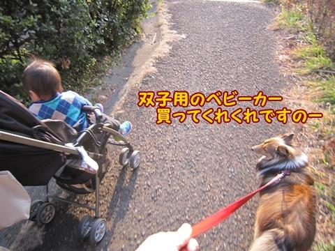 20130308_0_8.jpg