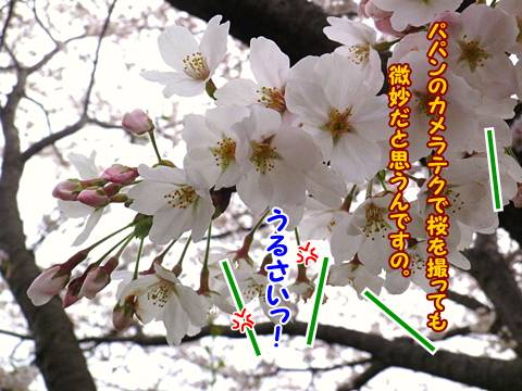 20130328011_20130401102229.jpg