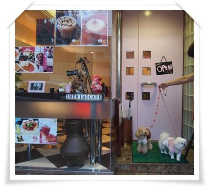 20111119カフェ A