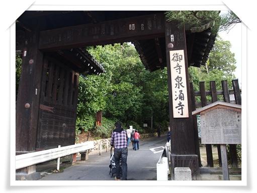 20111120東福寺 -ppp