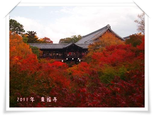 20111120東福寺 Z