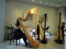 flower-harpさんのブログ-ハープ3台で♪