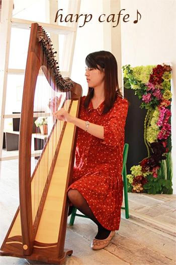 harp-cafe.jpg