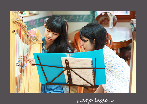 harp-lesson2.jpg