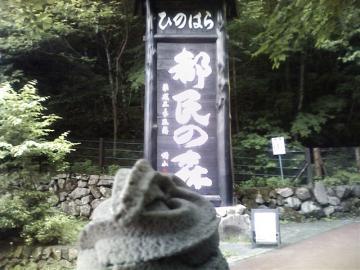 20100612都民の森