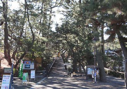海辺の三保松原と富士山-1