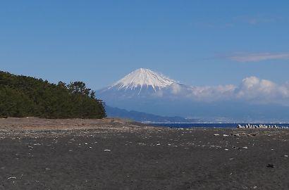 海辺の三保松原と富士山-3