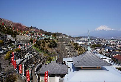 富士川梅園2日-1