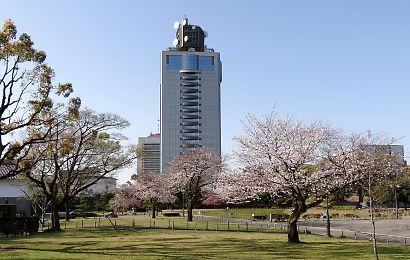 駿府城公園桜開花画像-6