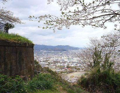 賤機山の桜画像-4