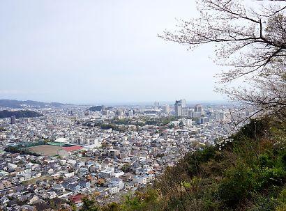 賤機山の桜画像-6