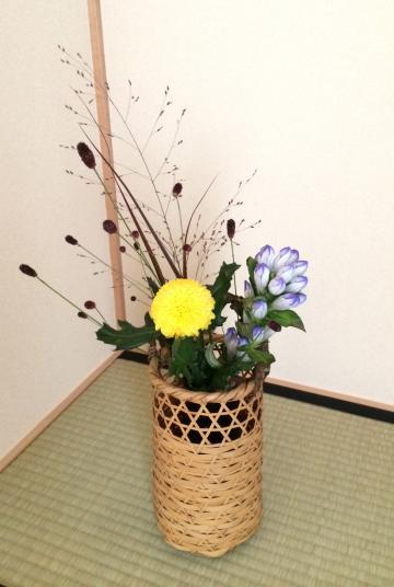 茶花_convert_20140929231822