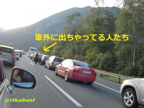 CIMG8974_20121001205019.jpg