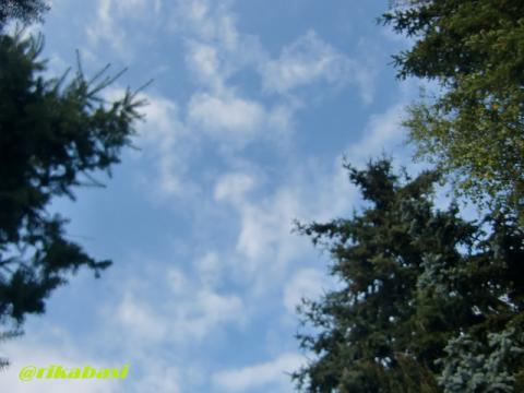 CIMG9352_20121003073551.jpg