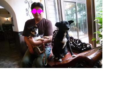 snap_rikimaru0816_20118521327.jpg