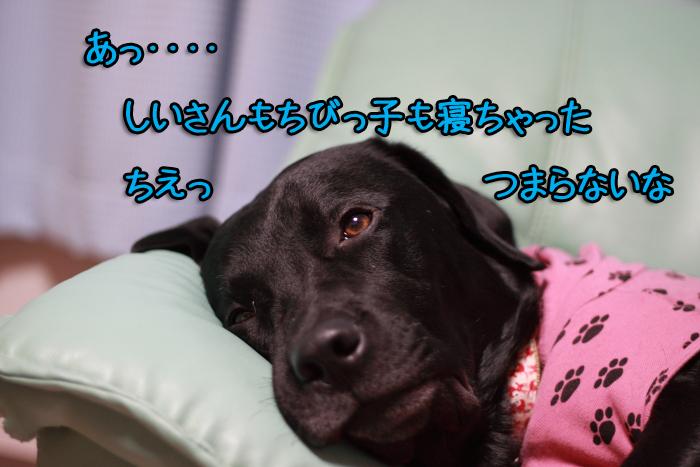 20111010-006.jpg