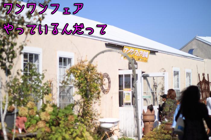 20111012-003.jpg