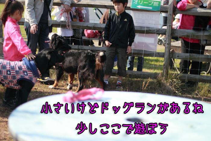 20111012-004.jpg