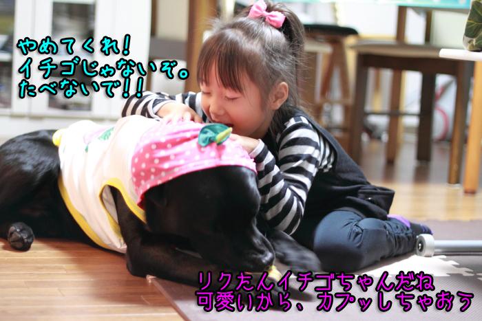 20111029-015.jpg