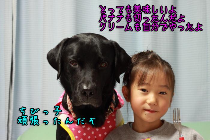 20111103-004.jpg