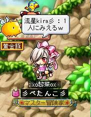 Maple100501_101128.jpg