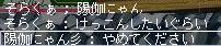 Maple110324_100111.jpg