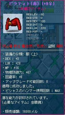 Maple110421_010402.jpg