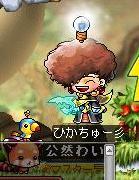 Maple110513_040148.jpg