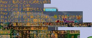 Maple110621_010214.jpg