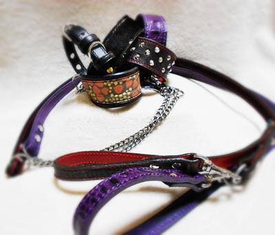 龍馬愛用の首輪とリード