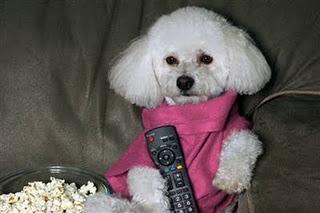 ポップコーン片手に、テレビ見てます・・・。