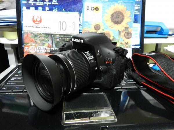 DSCN7118_convert_20111214185623.jpg