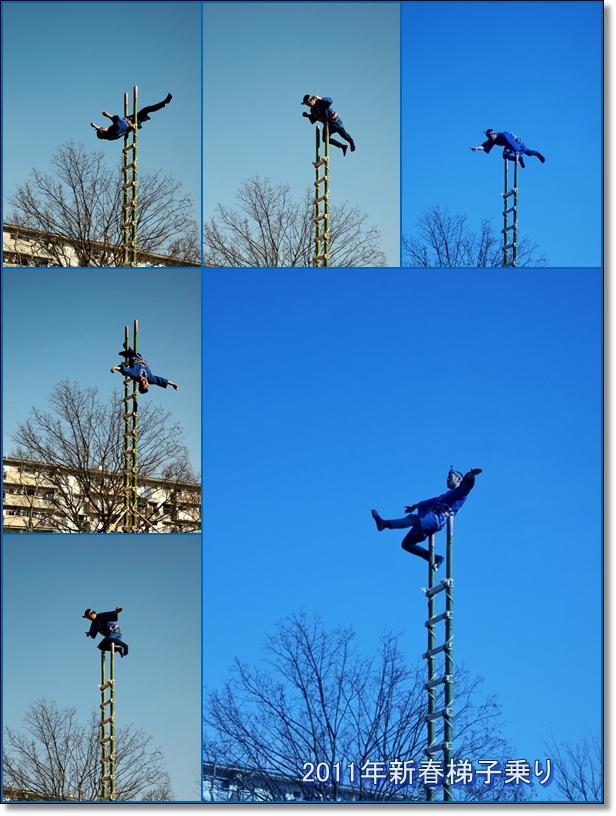 2011梯子乗り