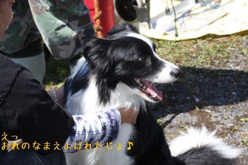 IMG_0024-rekuchu.jpg