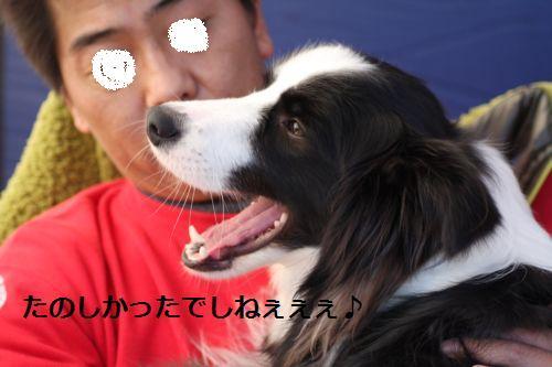 IMG_0039rekure.jpg