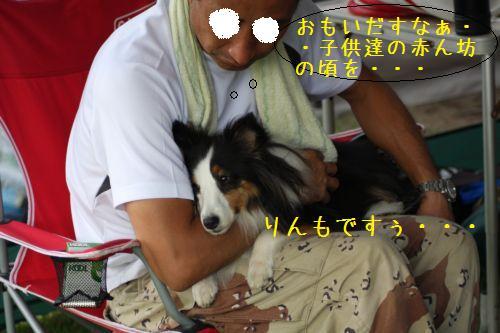 IMG_0080rinrinrin.jpg
