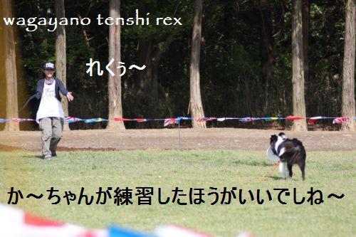 IMG_0144reku.jpg