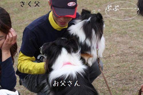 IMG_0147omaezaki.jpg