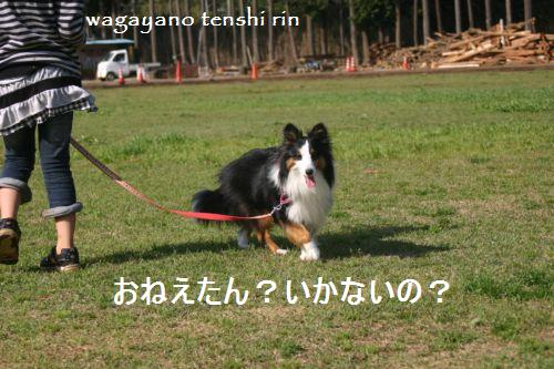 IMG_5167.jpg
