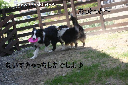 IMG_5517.jpg