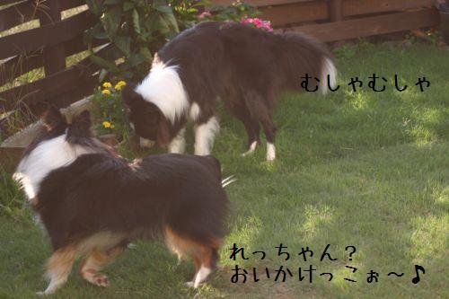 IMG_7780.jpg