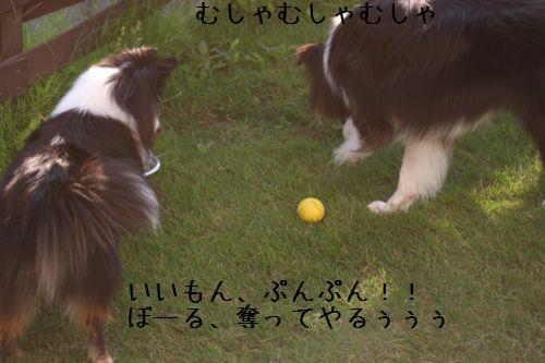 IMG_7786.jpg