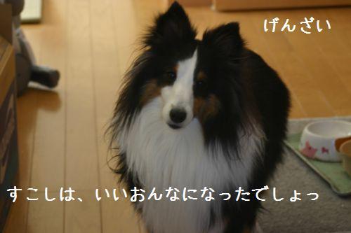 IMG_8111.jpg