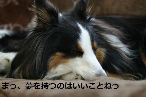 IMG_8830.jpg