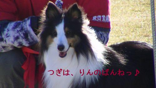 PIC_0059.jpg
