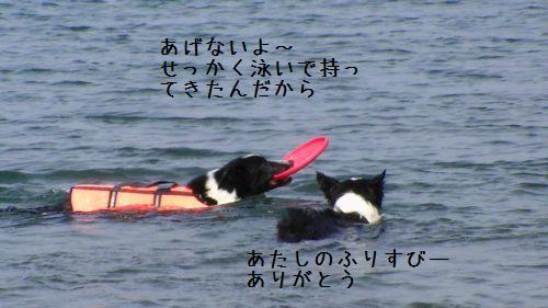 PIC_0152.jpg
